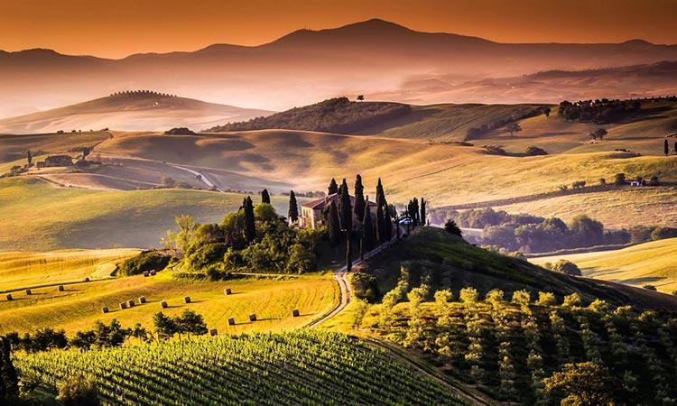 Tajne Italijanskih vina