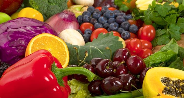 Vrste vegetarijanske ishrane